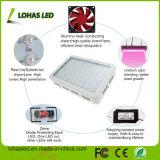 Kit de luz de aumento de LED de espectro completo de 300W-1200W para cultivo de plantas