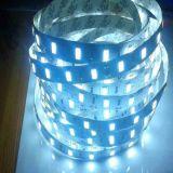 Lumière de bande flexible approuvée de la CE imperméable à l'eau 12V 30LEDs/M SMD5730 DEL