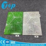 Material de alumínio contínuo decorativo do painel de revestimento da parede da placa
