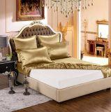 Conjunto puro de la hoja de la seda de mora de la elegancia de la nieve de Taihu de la serie de Oeko-Tex 100 de cama del oro de lujo verdadero inconsútil de seda estándar de seda de ropa 19momme Champán