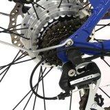 250W En15194 Hongdu 전기 자전거 남자 바닷가 함 E 자전거를 가진 전기 자전거 리튬 건전지 디스크 브레이크 무브러시 모터 알루미늄 합금 LCD 디스플레이