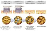 Портативный двойник нагнетает тело потери веса Slimming приспособление Cryolipolysis
