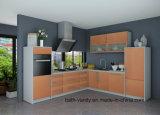 De de moderne Professionele Keukenkast van het Meubilair en Keuken Cabinetry van het Huishouden