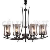 Grosse Menge-Förderung-hängende Lampe mit Glasfarbton (SL2246-8)