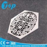 Подгонянный лист высеканный конструкцией для Perforated доски