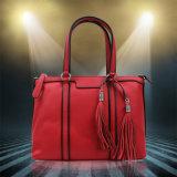 Modèles fonctionnels de simplicité de sac d'épaule pour le ramassage des femmes de sacs à main