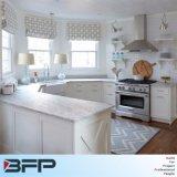 Projeto americano da cozinha, gabinetes de cozinha do PVC para a venda