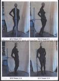 Imagens de escultura de origem para o desenvolvimento de manequins