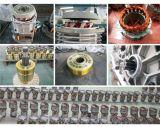 Classe lavoratrice M5 una gru Chain elettrica da 1 tonnellata con il freno elettromagnetico