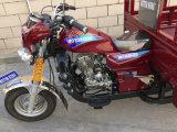 모터 화물 세발자전거 5 바퀴 가스 세발자전거 (SY250ZH-F9)
