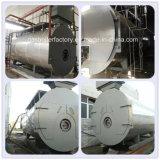 Bastante petróleo del tubo de fuego de la serie de Wns de la potencia de la calefacción y calderas de condensación de gas para la venta