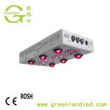 La PANNOCCHIA piena LED di spettro dell'interruttore 600W della fioritura del chip della PANNOCCHIA 5W di RoHS Dimmable del Ce coltiva l'indicatore luminoso