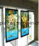 Colgante de techo Caja de luz LED para publicidad