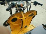 [تثك] كهربائيّة, [تثك], مسافر درّاجة ثلاثية, [ريكشو] ذاتيّة 1.0