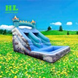 Buler hinchable estilo personalizado de delfines tobogán acuático con piscina