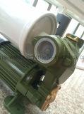 bomba de água 1awzb125 de escorvamento automático elétrica com Ce