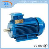 Motor assíncrono trifásico da eficiência superior da série de Ye3-132m-4 Ye3