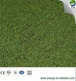 لعبة غولف يضع اللون الأخضر, جدجد, بوابة كرة, [وبت-2], [سغس], [س] يوافق, ماء برهان اصطناعيّة عشب مرج اصطناعيّة مرج اصطناعيّة لأنّ رياضات الصين