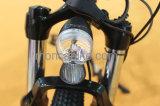 Eの自転車によって折られる電気バイクのEバイクのFoldableスクーターAiの合金フレームのバスケットを折る500W 48V