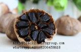 Réduire l'ail entier de presse de sang noir