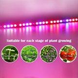 暖かい白LEDは花のプラントのための電球を育てる