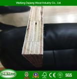 Garantie de haute qualité du panneau de coffrage mixte de doigt Core avec film confrontés pour la construction