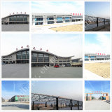 Warehouse /Workshop /Commercial Building를 위한 경제적인 Steel Frame House