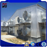 Materiais de construção e construção do frame da luz do preço de fábrica para a exploração agrícola de galinha