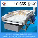 식물성 Washing Machine Industrial 및 Double Brush Type Cleaning Machine