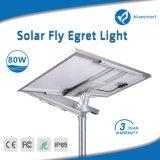 3 anni della garanzia di illuminazione IP65 di via dell'indicatore luminoso di lampada solare del giardino LED