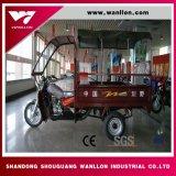 Carga de tres ruedas Lifan Trike Motor para el alquiler