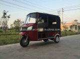4-6 motocicleta do triciclo do passageiro dos povos/três rodas (DTR-11B)