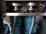 Máquina pulidora del corte del ribete de cristal recto de la amoladora