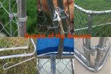 Гальванизированные псарни собаки бега собаки звена цепи