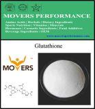 供給の高品質の栄養物の補足-グルタチオン