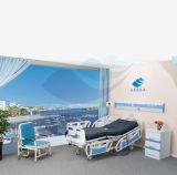 Base eléctrica de las funciones económicas calientes ICU de la venta de AG-By003c cinco