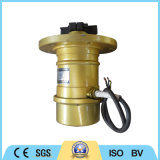 Motore elettrico registrabile del vibratore della forza centrifuga di serie di Vb
