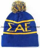 Aceptar la cantidad mínima de pedido, bordados tejidos de punto Cap Beanie Hat