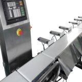 산업 자동적인 컨베이어 벨트는 음식을%s 검사 무게를 다는 사람 제조자를 딱 들어맞는다