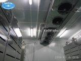 China de la descongelación de suministro de equipos para la carne de vacuno de carne de cerdo mariscos congelados