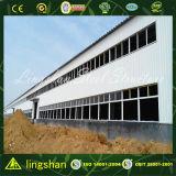 Espacio libre de la construcción de la fábrica de acero Estructura de metal galpón Taller de Diseño