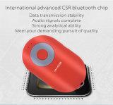 Beweglicher Lautsprecher mit Bluetooth, Radioapparat und TF-Karten-Funktion