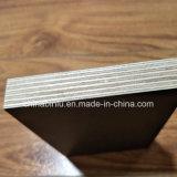 La película de formación concreta impermeable negra hizo frente a la madera contrachapada con buen precio