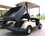 Goedkope Elektrische Opgeheven Auto/Cart/Buggy, de Auto van het Sightseeing, het Voertuig van het Nut met de Doos van de Lading (EQ9022-C1, 2-Seater)