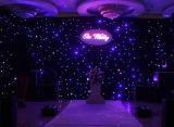 2m * 3m het Vuurvaste Flexibele LEIDENE van de Achtergrond Blue&White Licht van het Gordijn met Controlemechanisme voor Huwelijk DJ