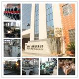 Шарики подшипника велосипеда 3/16 большого части фабрики Changzhou