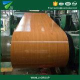 Dx51d Prepainted Galvalume bobinas de acero para materiales de construcción