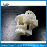 Специальное обслуживание быстро печатание прототипа 3D