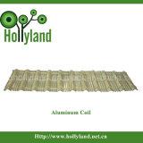 De Duidelijke Rol van het Aluminium PVDF (ALC1116)