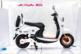 Scooters Elétricos de Scooter de Mobilidade Eletrônica Tipo Moderno para Adultos